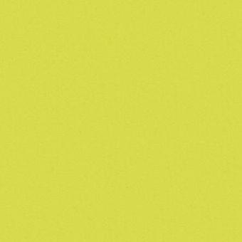 Зелёный лайм 5519
